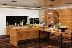 固装家具-现代风格-整体厨柜